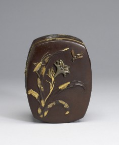 Box with Tiger Lily and Insects