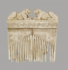 Comb with Lions and Geometric Designs