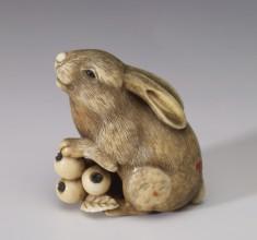 Rabbit with Loquats