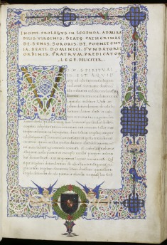 Initial V with White Vine Decoration