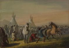 Picketing Horses