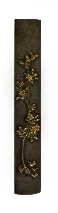 Kozuka with a Young Cherry Tree in Bloom