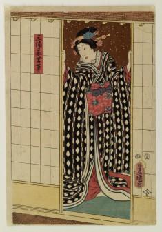 Miura mekake Wakakusa
