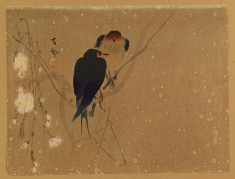Swallows on a Weeping Cherry Tree