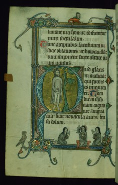 Leaf from Psalter: Psalm 51, Initial Q with Judas Hanging from a Tree